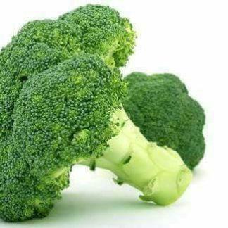 Benih Sayuran
